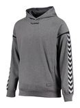 HUMMEL AUTHENTIC CHARGE Poly Hoodie grau (#133403-2007)